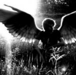 Avatar di DarknessLight