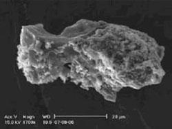 Una delle particelle di polvere di probabile origine cometaria trovate nel centro
