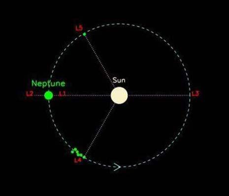 L'orbita di Nettuno e i suoi 5 Troiani scoperti in L4 e l'unico in L5