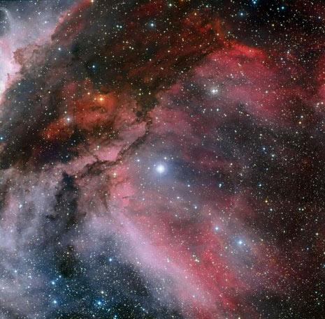 La stella WR 22