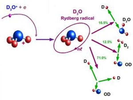 Le tre diverse vie di decadimento della molecola di D3O