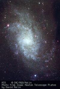 La galassia M33