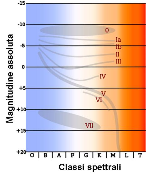 la magnitudine assoluta e le classi spettrali permettono di individuare molto bene le zone delle varie classi di luminosità