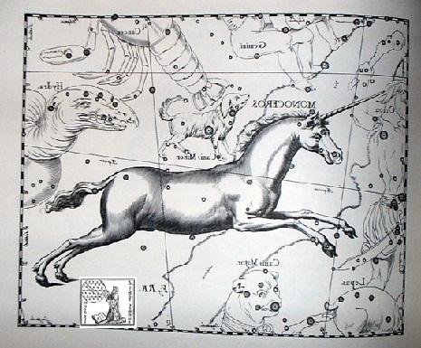 unicorno secondo hevelius