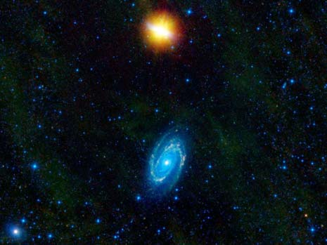 L'immagine infrarossa ripresa da WISE