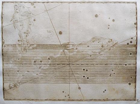 I Pesci nell'Uranometria