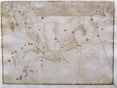 la Balena secondo l'Uranometria