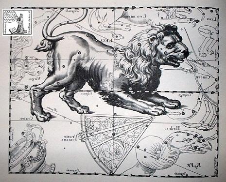 il Leone secondo Hevelius