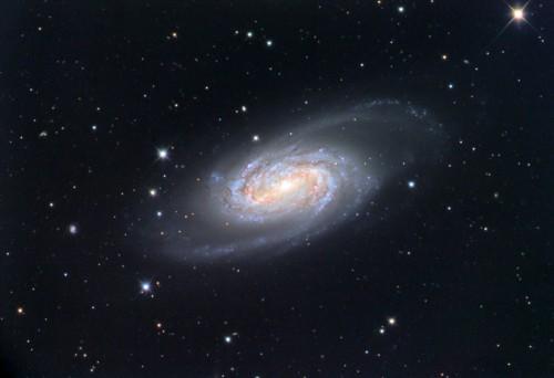 la galassia M105