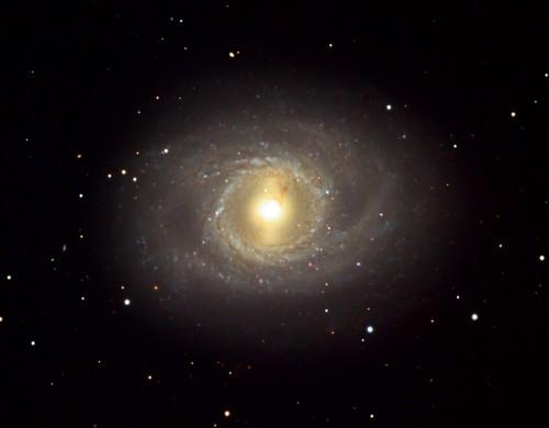 la galassia M95
