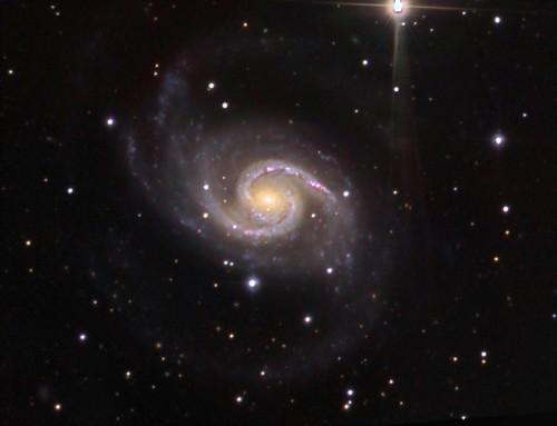 la stupenda galassia NGC 1566