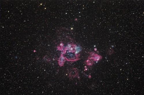 la nebulosa NGC 1935
