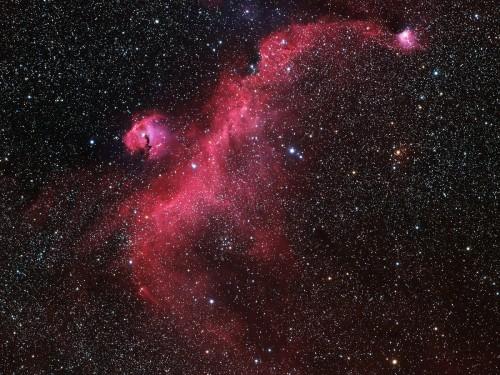 la nebulosa NGC 2032 (Seagull Nebula)