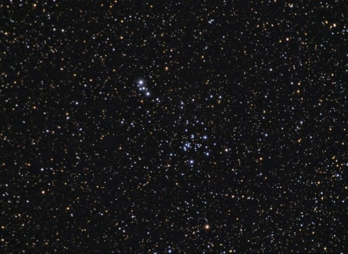 l'Open Cluster NGC 6204