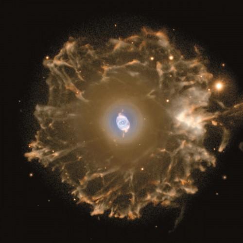 una meraviglia del cielo: NGC 6543 con al centro un'altra meraviglia