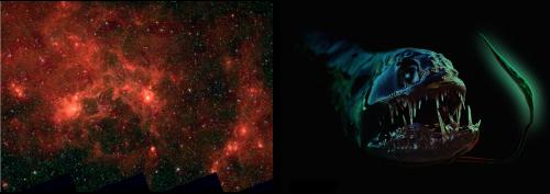 supergiganti nella Via latteaa