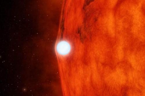 il transito della nana bianca