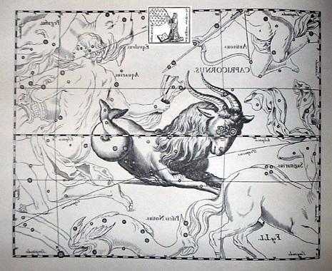 il Capricorno secondo Hevelius