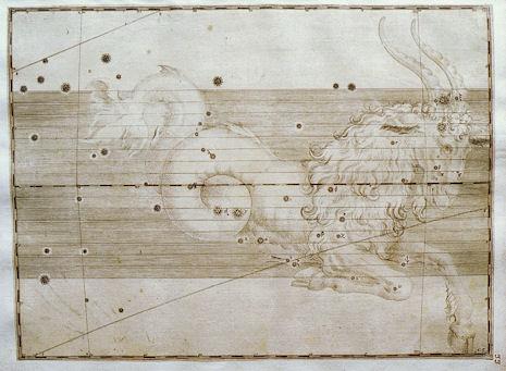 il Capricorno nell'Uranometria