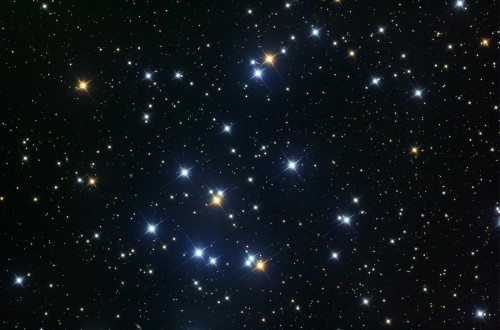 l'open cluster M44, Presepe