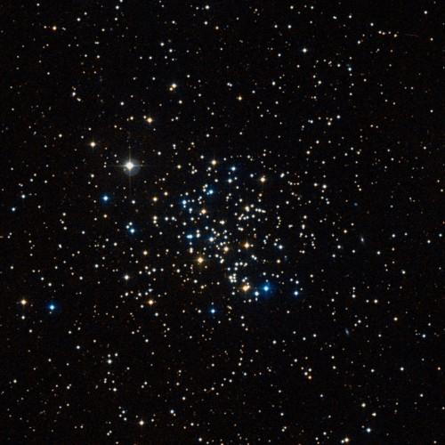 l'open cluster M67