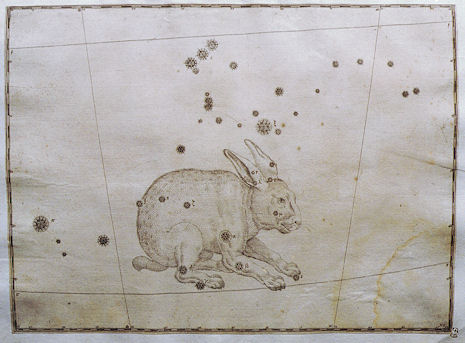 la Lepre nell'Uranometria