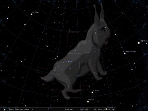 la Lince secondo Stellarium