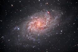 la galassia a spirale...</div> </li> <li> <a href=