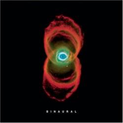 la copertina di un album dei Peral Jam