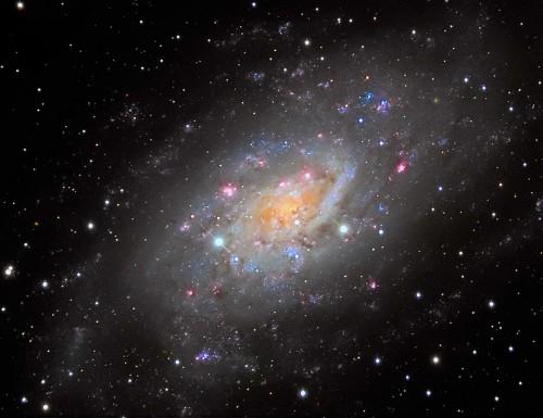 la galassia $NGC$ 2403