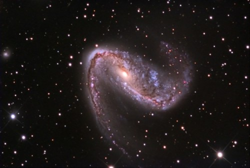 la galassia $NGC$ 2442