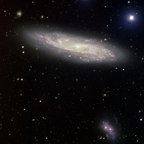 la galassia $NGC$ 2770