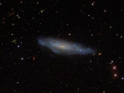 la galassia $NGC$ 3003