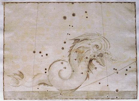 il Pesce Australe nell'Uranometria