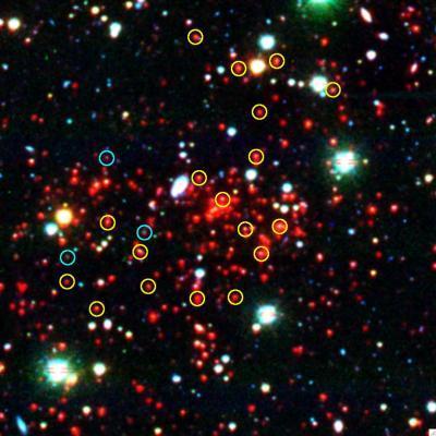 il super ammasso di galassie SPT-CL J0546-5345