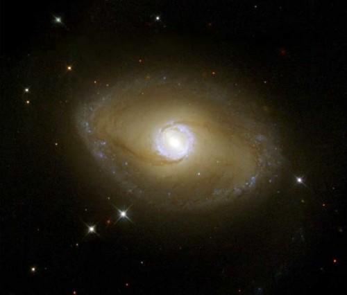 la galassia a spirale barrata $NGC$ 6782