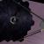 Il progetto dell'High-Definition Space Telescope avrebbe uno specchio primario di almeno 10 metri di diametro.