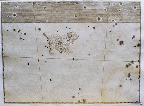 Il Cane Minore nell'Uranometria