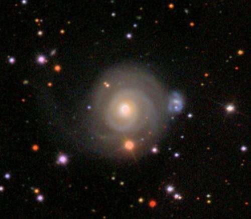 la $galassia$ a spirale $NGC$ 2485