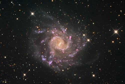 la splendida galassia a spirale barrata NGC 7424