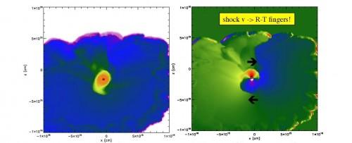 Queste immagini mostrano alcuni momenti delle simulazioni relative al piano centrale di un disco ruotante che orbita attorno a una protostella (puntino nero) secondo un modello 3D del collasso di una nube molecolare di gas e polvere causato dal passaggio di un'onda d'urto. A sinistra è rappresentata la densità, mentre a destra il grafico delle velocità mostra come l'onda d'urto (fronte più esterno) abbia prodotto delle rientranze a forma di dito responsabili della rotazione del disco attorno alla protostella centrale. Crediti: Alan Boss