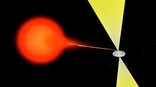 Illustrazione del flusso di materia da una stella compagna che accresce attorno ad una stella di neutroni. Il materiale forma un disco e produce due getti relativistici. La materia in prossimità alla stella di neutroni è così calda che emette raggi X mentre i getti vengono osservati in banda radio. Un meccanismo simile avviene in quei casi dove sono presenti i buchi neri. Credit: Bill Saxton, NRAO/AUI/NSF.