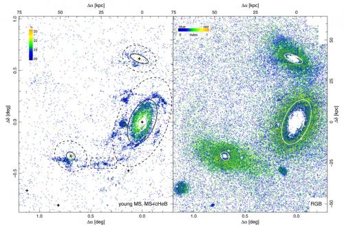 Distribuzioni spaziali stellari in declinazione e ascensione retta nell'intorno della galassia M81. A sinistra stelle di sequenza principale e stelle che stanno bruciando elio nel nucleo, mentre a destra giganti rosse di ramo. E' chiaramente visibile come grandi popolazioni di stelle occupino regioni poste fra M81 e le galassie minori, evidenza di un fenomeno in corso di cannibalismo.