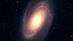 La galassia cannibale M81 ripresa dal Subaru Telescope nelle Hawaii. Credi: National Astronomical Observatory of Japan/Hyper Suprime-Cam project