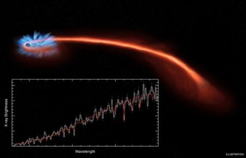 L'immagine illustra l'evento di distruzione mareale ASASSN-14li in cui viene mostrata la formazione di un disco di accrescimento composto dal materiale stellare. Si nota poi una lunga coda mareale formata dai resti della materia espulsa che si estende a grandi distanze dal buco nero. Gli spettri X ottenuti da Chandra e da XMM-Newton mostrano entrambi chiare evidenze della presenza di abbassamenti del flusso X in un breve intervallo di lunghezze d'onda e rispetto a quanto ci si aspetta sono spostate verso la parte più blu, un fatto legato alla presenza di un vento che si genera a partire dalle regioni più interne verso lo spazio. Credit: NASA/CXC/M. Weiss