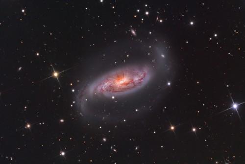 la bellissima $galassia$ $NGC$ 1808
