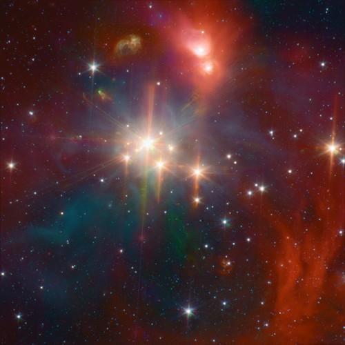l'ammasso stellare aperto Coronet Cluster