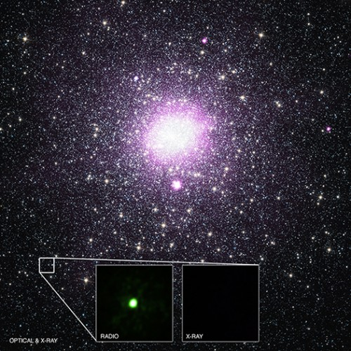 Crediti: X-ray: NASA/CXC/Univ. of Alberta/B.Tetarenko et al; Optical: NASA/STScI; Radio: NSF/AUI/NRAO/Curtin Univ./J. Miller-Jones