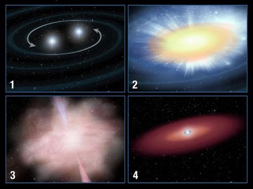 Questa sequenza illustra il passaggio dal lampo gamma breve all'esplosione di macronova: una coppia di stelle di neutroni in reciproca orbita (1) si scontrano, espellendo materiale altamente radioattivo (2); il materiale si riscalda e si espande, emettendo un intenso lampo gamma che dura appena un decimo di secondo (3), e un'emissione più debole ma molto più persistente, chiamata macronova (4). Credit: NASA, ESA, A. Field (STScI)