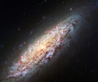 L'immagine mostra la galassia a spirale 'disk-dominated' NGC 6503, una delle 153 galassie oggetto di studio, ripresa dallo strumento Advanced Camera for Surveys installato a bordo del telescopio spaziale Hubble. Soprannominata anche Lost-in-Space galaxy, cioè galassia sperduta nello spazio, si tratta di una nana a spirale situata al limite di una regione dello spazio chiamata Vuoto Locale. La galassia non appartiene a un gruppo di galassie e quindi è gravitazionalmente isolata. Crediti: NASA, ESA, D. Calzetti (University of Massachusetts), H. Ford (Johns Hopkins University), Hubble Heritage (STScI/AURA)-ESA/Hubble Collaboration